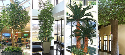 Mall Silks: Artificial Plants and Trees